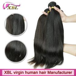 Unverarbeitete Jungfrau 100% kein chemisches rohes brasilianisches Haar