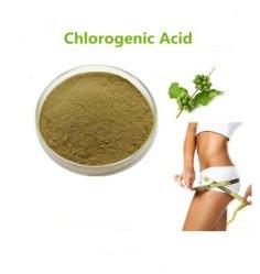 Extrato de grãos de café verde 50% Ácido Chlorogenic à perda de peso CAS 327-97-9
