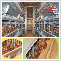 Automatique de la batterie de l'équipement de la Volaille Poulet Oeufs de poules pondeuses en cage de couche