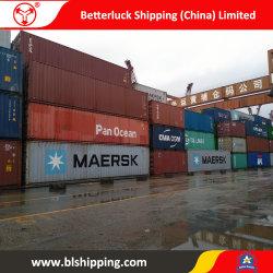 Морские грузовые перевозки из Китая в Восточный/Россия контейнер службы доставки
