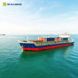 Internationales Seebester Logistik-Versandservice nach Australien