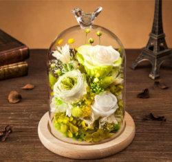 유리 돔에 LED 조명이 있는 레드 로즈 몰락한 꽃잎 어머니의 날 선물