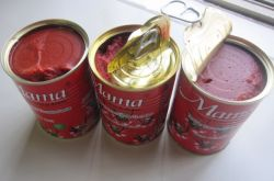 Tomate-Umpflanzer-Maschinen-Verkaufs-aseptischer Tomatenkonzentrat-Tomate-Saft, der Maschinerie-Ketschup-Tomate bildet