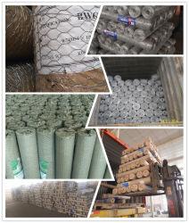 Collegare esagonale Nettting di Dipped/PVC collegare rivestito galvanizzato/caldo del ferro