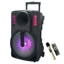 """15 """" Lautsprecher-Laufkatze-Lautsprecher des lauten Lautsprecher-LED"""