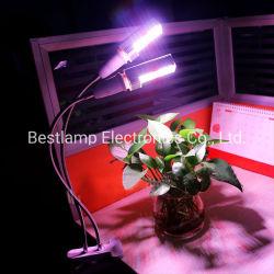 Schreibtisch-Klipp LED wachsen für Veg Frucht und Blumen hell