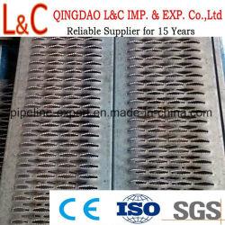 Plancha Perforada Rejilla/rejilla soporte de agarre/rejilla de seguridad