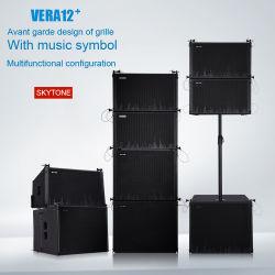 Vera12 모형 사운드 시스템 나무로 되는 스피커 상자