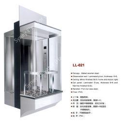 광장식 선실과 함께 중국 제조 유리 파노라마 관광 엘리베이터