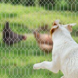 Дешевые цены куриное мясо кролика клетку Coop ограждения проволочной сетке рулонов с шестигранной головкой проволочной сетке взаимозачет сетки сделаны в Китае