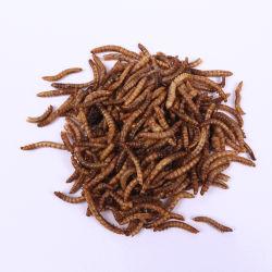 Vermi della farina secchi nuovo stile per l'alimento per animali domestici dell'uccello animale