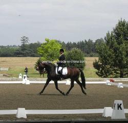 実用的な乗馬の高力プラスチックPVC馬の携帯用および移動可能なDressage競技場