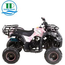 Het hete Voertuig van de Verkoop met de Fietsen 125cc ATV van de Vierling van Ce