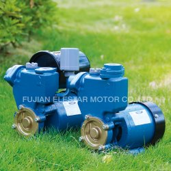 Nettoyer la pompe à eau portable horizontal pour le jardin PS-126