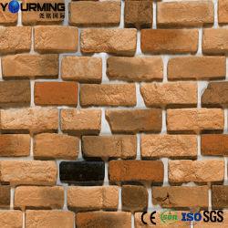 De rustieke Vloer van de Tegels van het Porselein van de Muur en van de Tegels van de Decoratie
