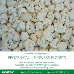 IQF buquês de couve-flor, congeladas buquês de couve-flor, IQF Couve-flor cortes, IQF Cortar Couves, couves IQF pepitas, ISO/HACCP/BRC/Kosher/Halal