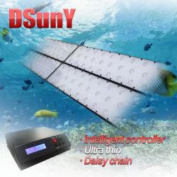 """LED programmable pour le poisson d'éclairage de l'aquarium réservoir avec lampes ultraminces 112X3W 72"""" 96"""" Pas de bruit de ventilateur"""