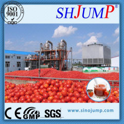 Ligne de traitement de pâte de tomate et de la ligne de production de pâte de tomate/Équipement de traitement de la sauce tomate/ Tomato Ketchup Ligne de remplissage/de la sauce tomate Making Machine