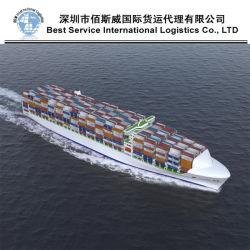 Logistica internazionale, agente di trasporto dell'oceano, servizio completo del contenitore (FCL20 '' 40 '')