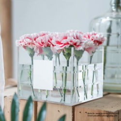 16 furos feitos à mão em acrílico de embalagem personalizada Floreira Titular Exibir