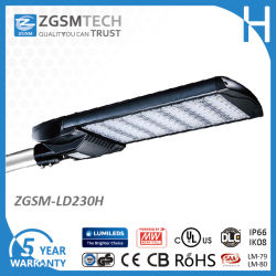 230W LED Cobra Tête Lanterne avec Motion Sensor