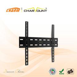 Örtlich festgelegte Zahnstange Art-Metall-Fernsehapparat-Stand/TV Holder/TV (CT-PLB-E813)