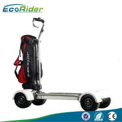 60V 20.8ah 1000W Nouveau Design Longboard Skateboard électrique de Golf