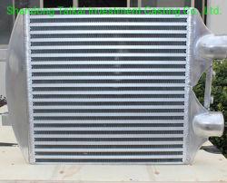 Il riscaldamento della parete dei radiatori l'alluminio della pressofusione