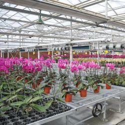 Nes養 樹園の花の家は Munal 移動可能なベンチ / ベッドおよび制御システムを備えている