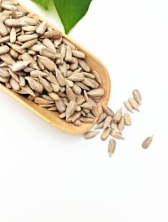 2019 La récolte Noix et graines de tournesol de compétitivité des prix/ les noyaux de citrouille