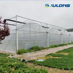 ターンキーサービスの野菜フルーツのトマトのいちごのきゅうりのための商業完全なHydroponic成長するアーチのタイプポリカーボネートの温室
