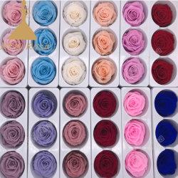 Reale Noten-Blumen der Betäubung-6-7cm für Hochzeits-Ausgangsdekor (nicht Silk Blumen)