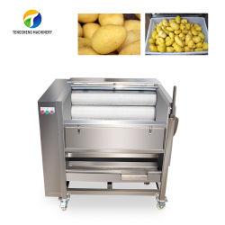 Rondelle de légumes Pommes de terre de manioc oignon Peeler Prix platine bouton Nettoyage des rouleaux d'onde Peeling Machine (TS-M300)
