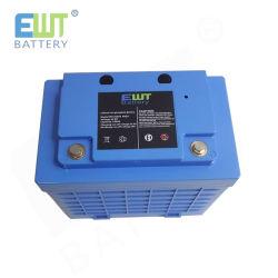 Batteria del pacchetto 12V 100ah LiFePO4 della batteria di ione di litio con BMS