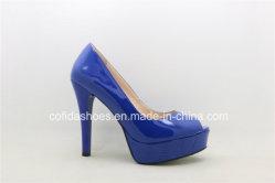Reizvolle Blick-Zehe-Absatz-Plattform-Dame-Schuhe
