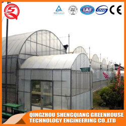 Landwirtschaft/Farm/Multi-Span/Single-Span/Tunnel-Plastikfolie Gewächshaus mit Bewässerungssystem für Tomaten/Erdbeeren/Gurkenpflanzen