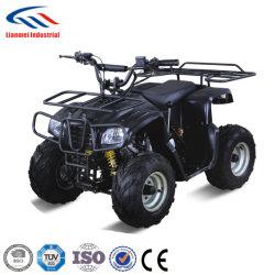 110 CC Chinese ATV met EPA