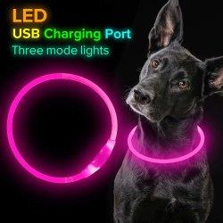 LED-Hundehalsring, nachladbarer USB, glühende Haustier-Hundehalsring-Nachtsicherheit, Form leuchten Muffen-kleinen mittelgrossen Hunden