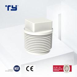 Пробка из ПВХ (CPVC PPR PP) давления пластика фитинги трубы BS EN 10026-2 стандарт, Ce сертифицирована Ty OEM