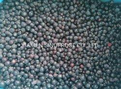 冷凍ブルーベリー、、 IQF ブルーベリー、 IQF ビルベリー、冷凍ビルベリー、 。 IQF はブルーベリーを栽培し、冷凍で栽培したブルーベリー、 IQF ワイルドブルーベリーを栽培しています