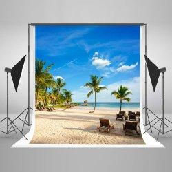 Einfaches Innenhochzeits-Fotographien-Hintergrund-Gewebe für Foto-Studio