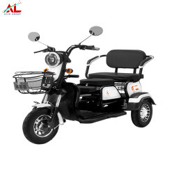 Al-Q100 Alin drei Rad Elektro-Dreirad Roller Fahrrad