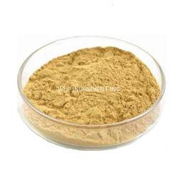 高水準の低価格のCordyceps Sinensisの粉