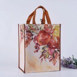 Custom тканого пластиковый мешок для цветной печати с помощью рукоятки