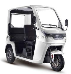 La Chine haut de la marque bon marché un grand espace clos des adultes de bonne qualité Tuk Tuk électrique de cabine Visites Rickshaw Tricycle électrique