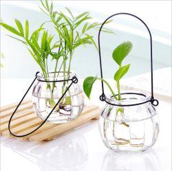[هدروبونيك] معمل زجاج مزهرية واضحة زجاج زهرة وعاء مع مقبض معدني لـ Homedecor