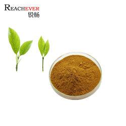 工場で供給される有機茶抽出物純自然緑茶抽出物 バルクのパウダー価格