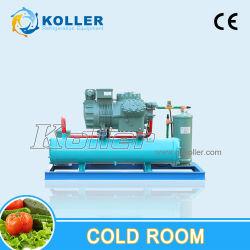 Monoblock-kondensierender Gerät Eqipped Kühlraum für einphasiges