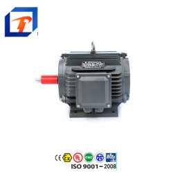 De Ce Goedgekeurde Ye2 AC van de Elektrische Motor van de Reeks 0.12kw-315kw Asynchrone Motor In drie stadia van de Inductie van de Motor voor de Pomp van het Water, de Compressor van de Lucht, de Ventilator van de Ventilator van het Reductiemiddel van het Toestel