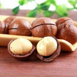 Rohe organische chinesische Macadamia-Mutter des Preminum Grad-100%Natural